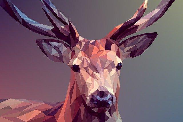Graficky znázornený jeleň.jpg